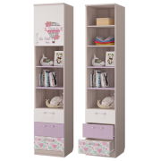 Шкаф для книг с ящиками и дверкой