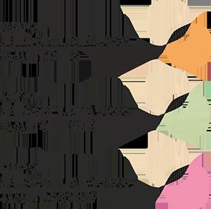 лдсп-72-73_ЗВЕЗДОЧКА